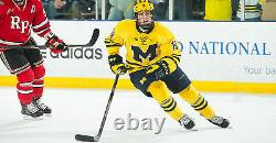 Dylan Larkin Signed Michigan Wolverines Maize Jersey Psa/dna Rookie Graph Coa